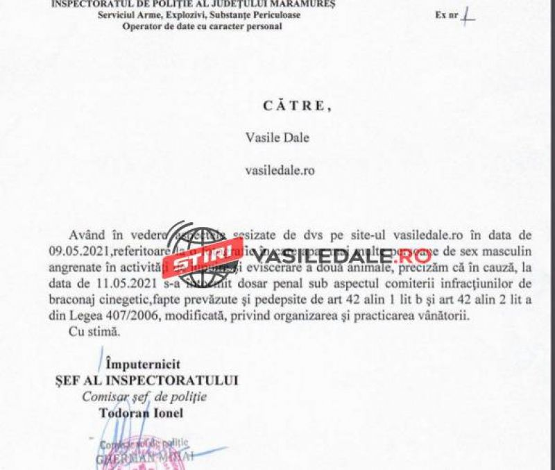 IPJ MARAMUREȘ - Dosar penal în cazul unei partide de vânătoare la finalul căreia ar fi jupuit și eviscerat mistreții împușcați la fața locului